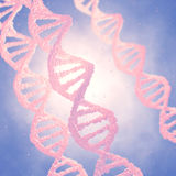 Genetic engineering and cloning. Dna double helix molecules and chromosomes , Genome Royalty Free Stock Photos