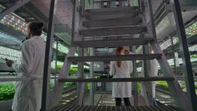 Genetic engineering. Doctors in white coats look and adjust the work of the vertical farm checking the plants and. Looking into the screens of tablets stock video