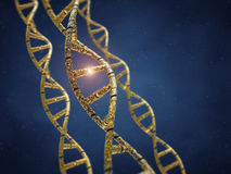 Genetic engineering Stock Images