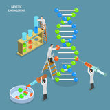 Genetic engineering isometric flat vector concept. Stock Images