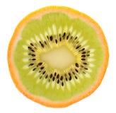 Genetic engineering - kiwi inside of an orange. Isolated on white background Royalty Free Stock Photography