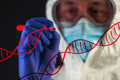 Genetic engineering and science, scientist working in laboratory. Genetic engineering and science, scientist wearing protective clothing working in laboratory royalty free stock image
