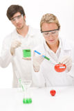 Genetic engineering - scientist in laboratory. Genetic engineering - scientists in laboratory, GMO testing experiment royalty free stock image