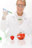 Genetic engineering - scientist in laboratory Royalty Free Stock Photo