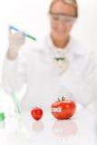 Genetic engineering - scientist in laboratory Royalty Free Stock Photo