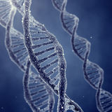 Genetic engineerring Stock Photos