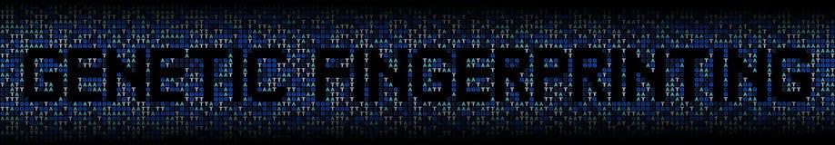Genetic Fingerprinting text on DNA genetic code background illustration. Genetic Fingerprinting text on blue DNA genetic code background illustration Royalty Free Stock Photos