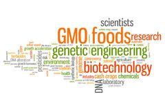 Genetic food engineering Royalty Free Stock Image