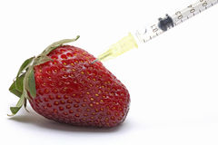 Genetic food engineering concept. With Strawberry and syringe royalty free stock image
