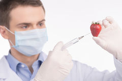 Genetic food engineering concept with fresh red strawberry. Stock Image