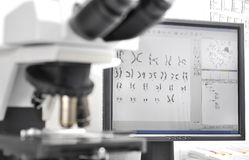 Genetic Investigation Stock Photography
