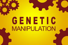 Genetic Manipulation biotechnological concept. GENETIC MANIPULATION sign concept illustration with red gear wheel figures on yellow background stock illustration