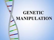 Genetic Manipulation concept Royalty Free Stock Photo