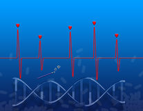 The genetic miracle Stock Photo
