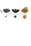 Genetic Modification, blueberry, blackberry, strawberry, fruit, Royalty Free Stock Image