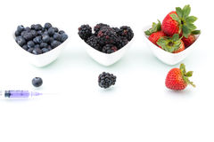 Genetic Modification, blueberry, blackberry, strawberry, fruit, Royalty Free Stock Images