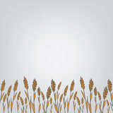 Genetic modification ears. Field for text Royalty Free Stock Images