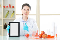 Genetic modification food information are everywhere on internet Royalty Free Stock Photo