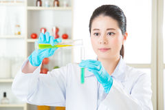 Genetic modification food research will find the clue Royalty Free Stock Photos