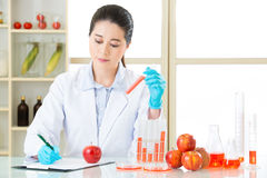 Genetic modification food test is very important. For human health royalty free stock photography