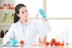 Genetic modification food test is very important. For human health stock photo