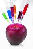 Genetic modification Royalty Free Stock Image