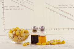 Genetic modification with sweet corn Stock Photo