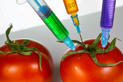 Genetic modification Royalty Free Stock Images