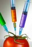 Genetic modification Stock Photo