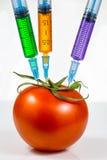 Genetic modification Stock Image