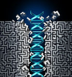 Genetic Research Success Royalty Free Stock Photo