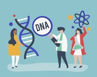 Genetic Scientists conducting research and experiment stock illustration