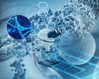 Genetic study Stock Image