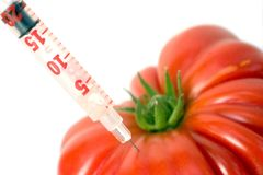 Genetic tomato. DNA test on a red tomato Stock Photography