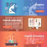 genetica MENSELIJK GENOOM Menselijke anatomie royalty-vrije illustratie