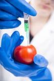 Genetically доработано стоковые изображения rf