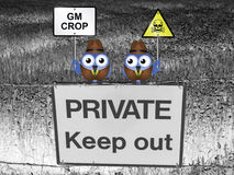 Genetically modified crop Stock Photos