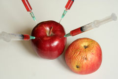 Genetically modified food Royalty Free Stock Photography