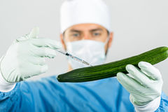 Genetically modified food - scientist make injection in cucumber Royalty Free Stock Photos