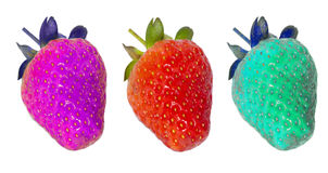 Genetically modified food, strawberries Royalty Free Stock Photos