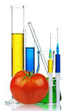 Genetically modified organism Stock Image