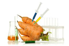 Genetically modified organism Royalty Free Stock Photos