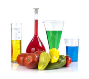 Genetically modified organism - ripe peppers,  tomatoes  and laboratory glassware Royalty Free Stock Photos