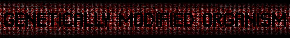 Genetically Modified Organism text on DNA genetic code background illustration. Genetically Modified Organism text on red DNA genetic code background Stock Photography