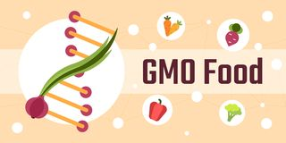 Genetically modified food. Genetically modified organisms gmo food flat illustration Royalty Free Stock Images