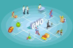 Genetically Modified Organisms Isometric Flowchart. On turquoise background with dna, research, organic food, gmo goods vector illustration Royalty Free Stock Photography