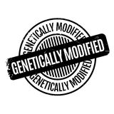 Genetically Modified rubber stamp. Grunge design with dust scratches. Effects can be easily removed for a clean, crisp look. Color is easily changed Stock Photography