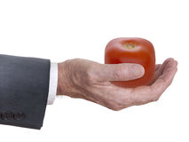 Genetically modified vegetable, big business concept. Stock Images