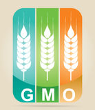 Genetically modifies plants. Agricultural concept Stock Photo