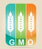Genetically modifies plants Stock Photo
